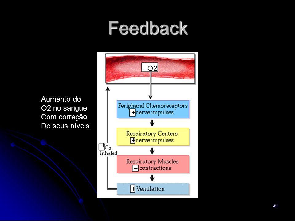 30 Feedback - O2 + + + + + Aumento do O2 no sangue Com correção De seus níveis
