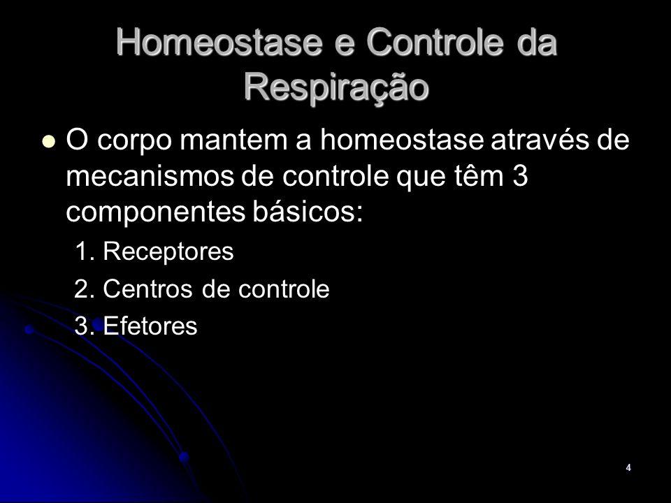 4 Homeostase e Controle da Respiração O corpo mantem a homeostase através de mecanismos de controle que têm 3 componentes básicos: 1. Receptores 2. Ce