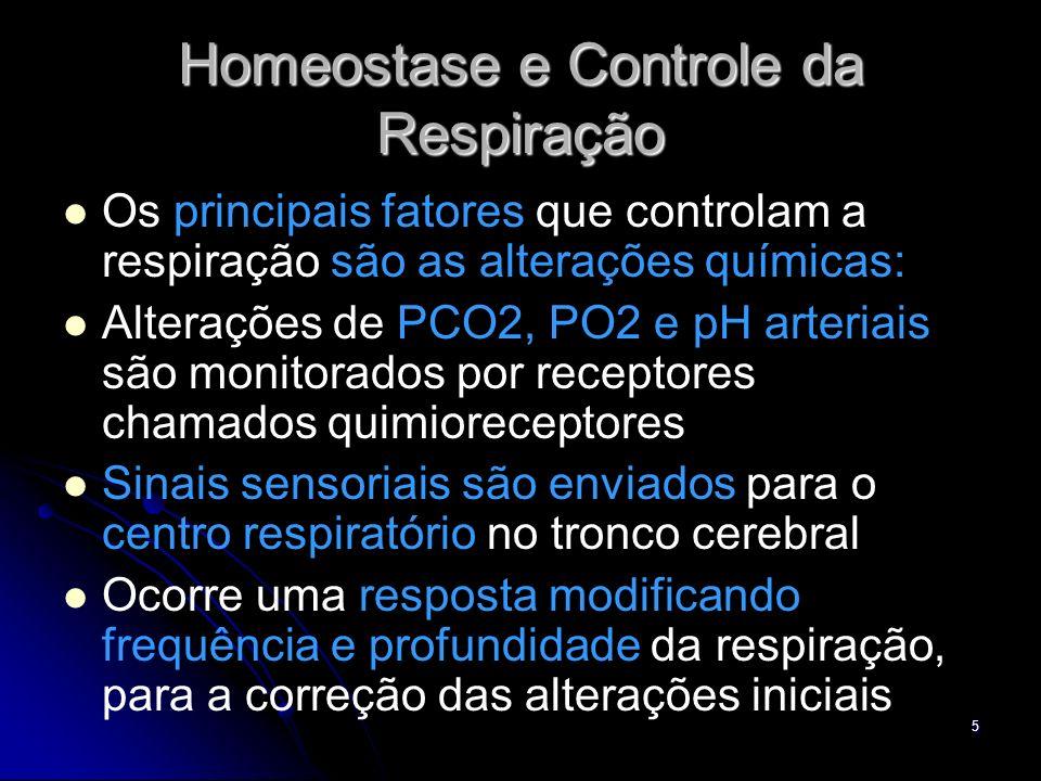 6 Homeostase e Controle da Respiração pO2, pCO2 e pH ± Quimiorecetpres C.Respiratório Resposta Alt.Ventilação Correção da alteração inicial
