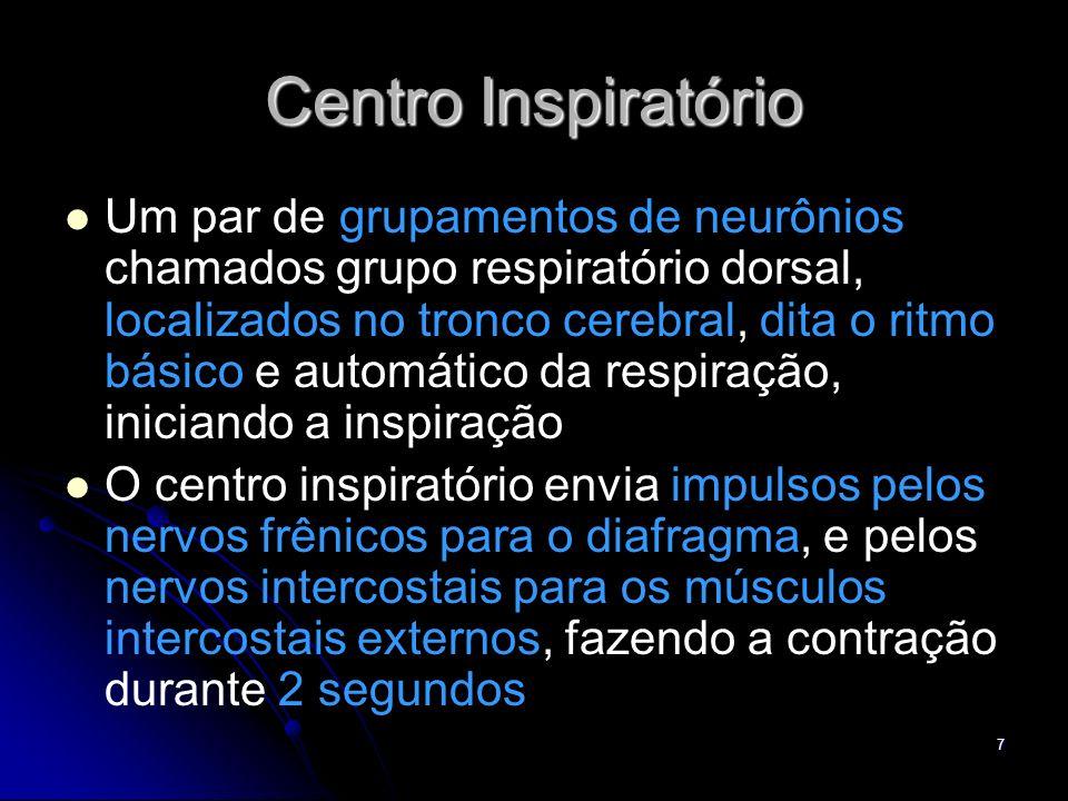 7 Centro Inspiratório Um par de grupamentos de neurônios chamados grupo respiratório dorsal, localizados no tronco cerebral, dita o ritmo básico e aut