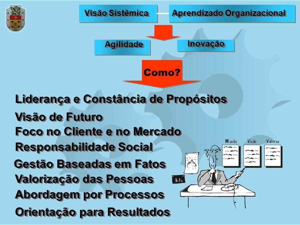 Empresa de Excelência Um empresa para ser bem sucedida deve, então, ter um domínio completo dos FUNDAMENTOS DA EXCELÊNCIA.