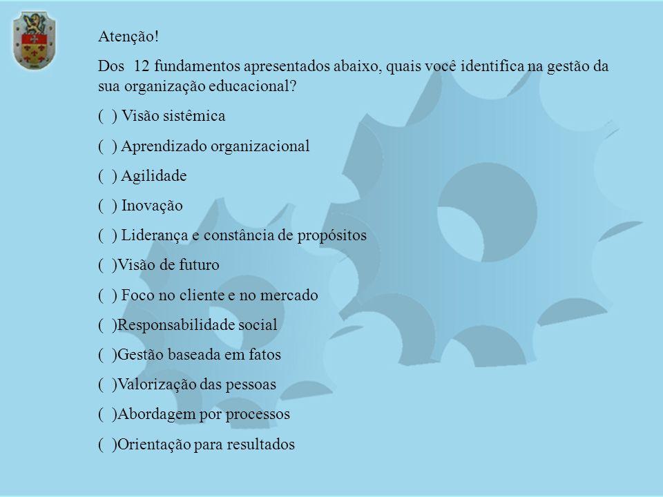 Agilidade Aprendizado Organizacional Liderança e Constância de Propósitos Visão de Futuro Foco no Cliente e no Mercado Responsabilidade Social Valoriz