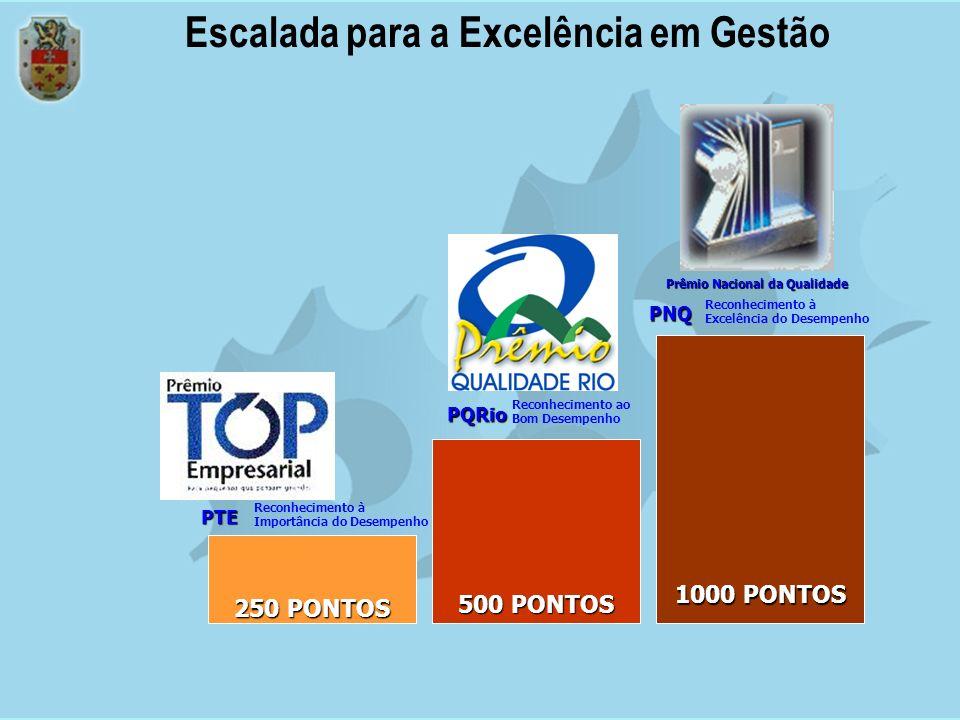 Reconhecida a validade da criação do Prêmio no Brasil, o projeto foi concretizado em outubro de 1991, quando 39 organizações, públicas e privadas, se