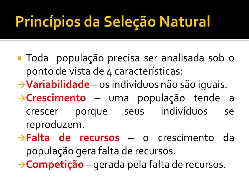 Toda população precisa ser analisada sob o ponto de vista de 4 características: Variabilidade – os indivíduos não são iguais. Crescimento – uma popula