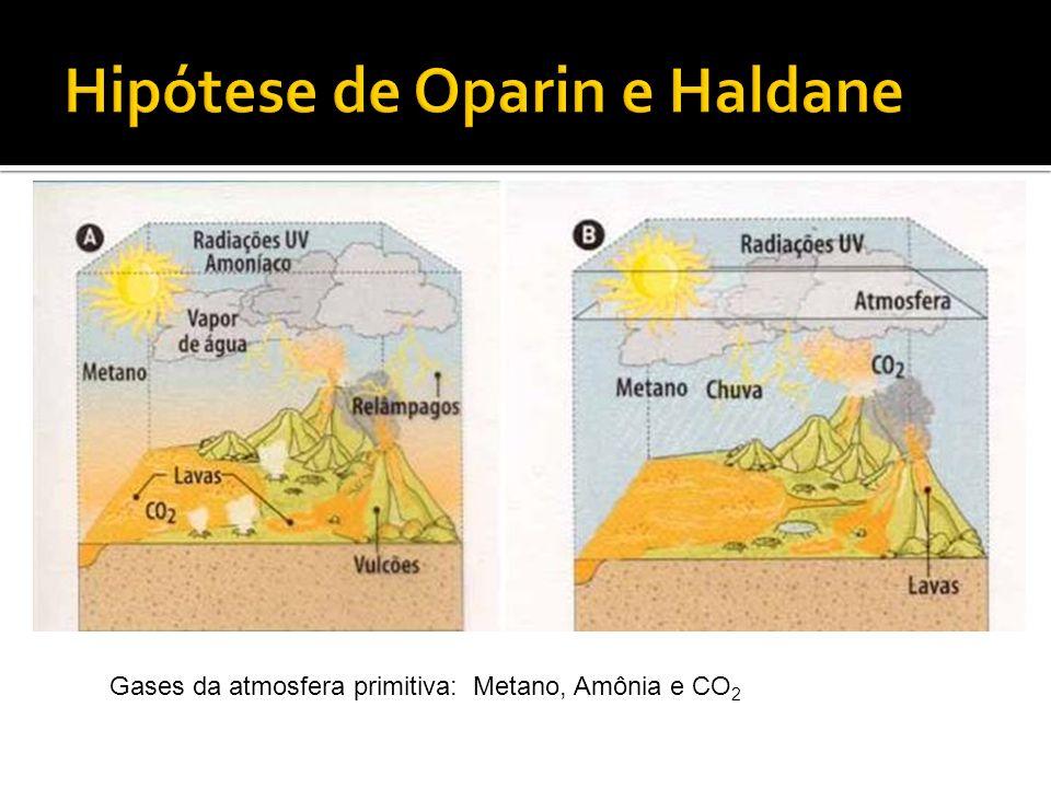Gases da atmosfera primitiva: Metano, Amônia e CO 2