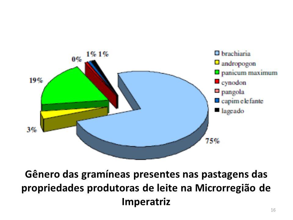Gênero das gramíneas presentes nas pastagens das propriedades produtoras de leite na Microrregião de Imperatriz 16