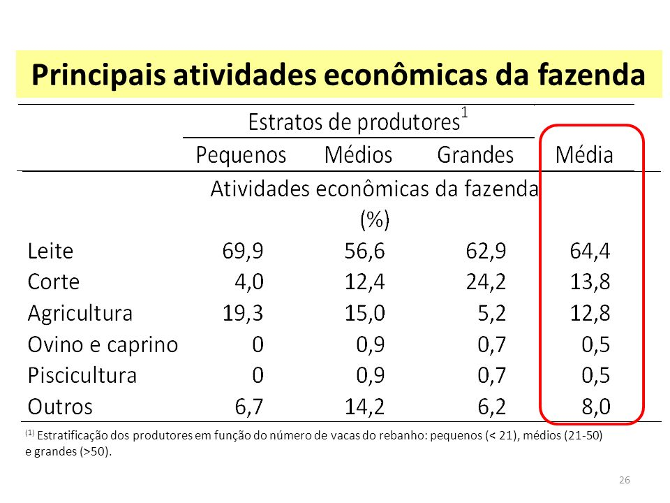 Principais atividades econômicas da fazenda (1) Estratificação dos produtores em função do número de vacas do rebanho: pequenos ( 50). 26