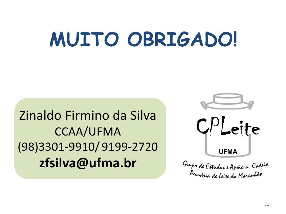 MUITO OBRIGADO! Zinaldo Firmino da Silva CCAA/UFMA (98)3301-9910/ 9199-2720 zfsilva@ufma.br 31
