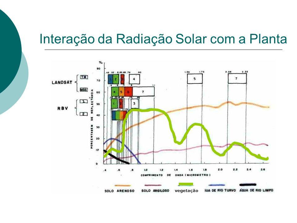 Interação da Radiação Solar com a Planta vegetação
