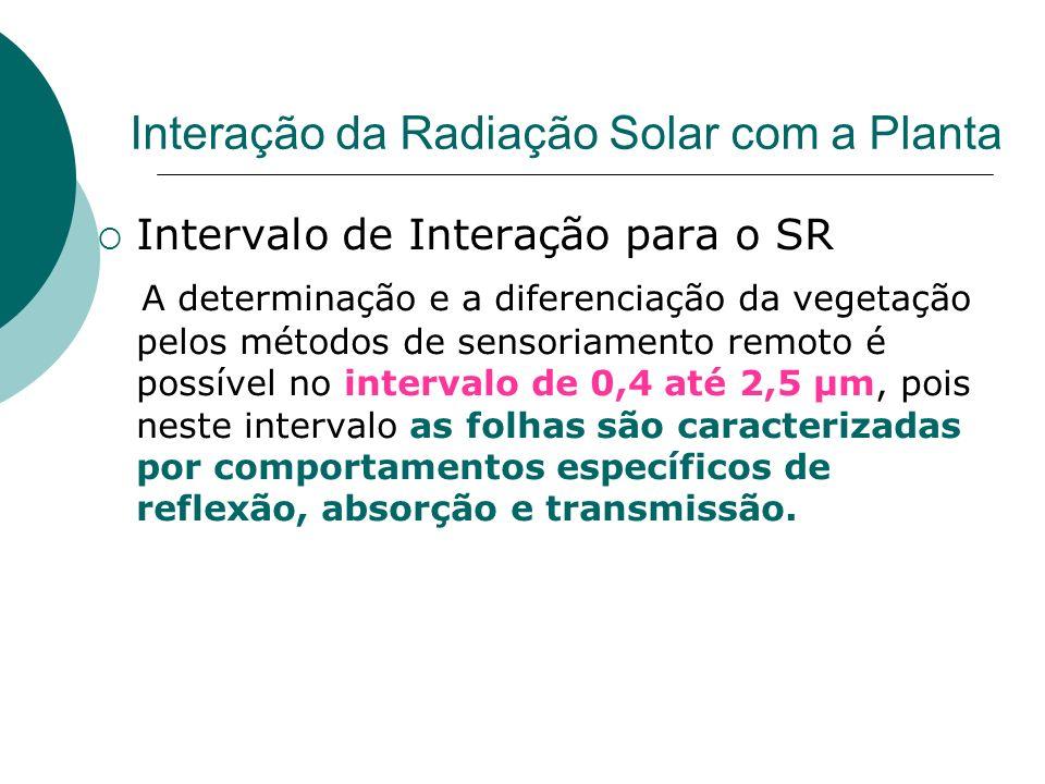 Interação da Radiação Solar com a Planta Intervalo de Interação para o SR A determinação e a diferenciação da vegetação pelos métodos de sensoriamento