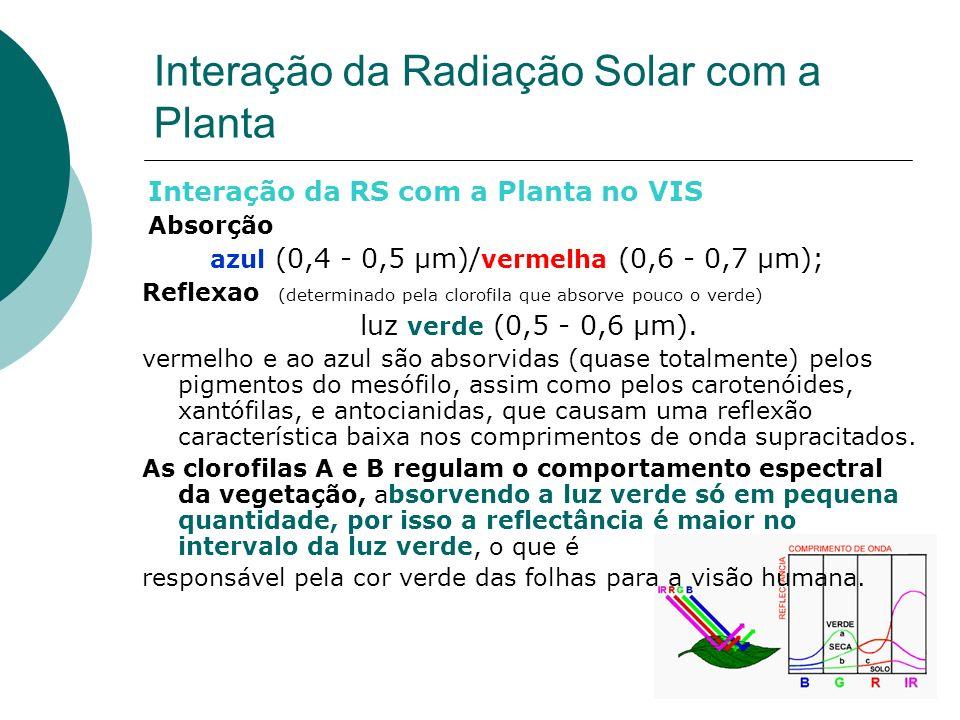 Interação da RS com a Planta no VIS Absorção azul (0,4 - 0,5 µm)/ vermelha (0,6 - 0,7 µm); Reflexao (determinado pela clorofila que absorve pouco o ve