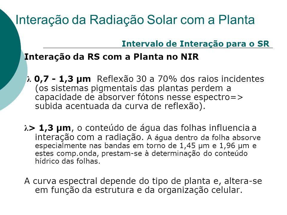 Interação da RS com a Planta no NIR λ 0,7 - 1,3 µm Reflexão 30 a 70% dos raios incidentes (os sistemas pigmentais das plantas perdem a capacidade de a