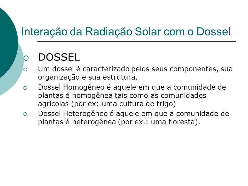 Interação da Radiação Solar com o Dossel DOSSEL Um dossel é caracterizado pelos seus componentes, sua organização e sua estrutura. Dossel Homogêneo é