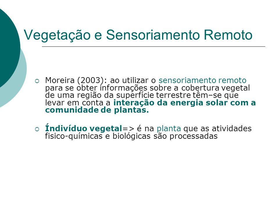 Interação da RS com a Planta no VIS Absorção azul (0,4 - 0,5 µm)/ vermelha (0,6 - 0,7 µm); Reflexao (determinado pela clorofila que absorve pouco o verde) luz verde (0,5 - 0,6 µm).