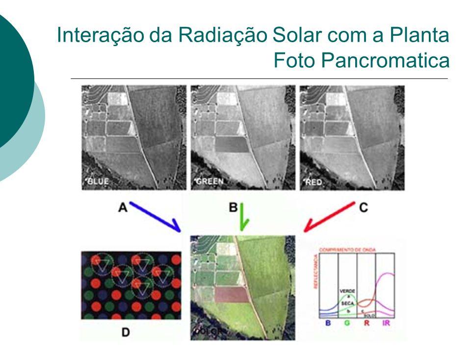 Interação da Radiação Solar com a Planta Foto Pancromatica