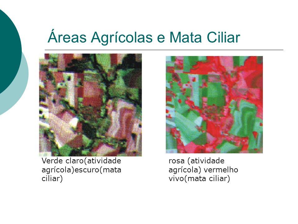 Áreas Agrícolas e Mata Ciliar Verde claro(atividade agrícola)escuro(mata ciliar) rosa (atividade agrícola) vermelho vivo(mata ciliar)