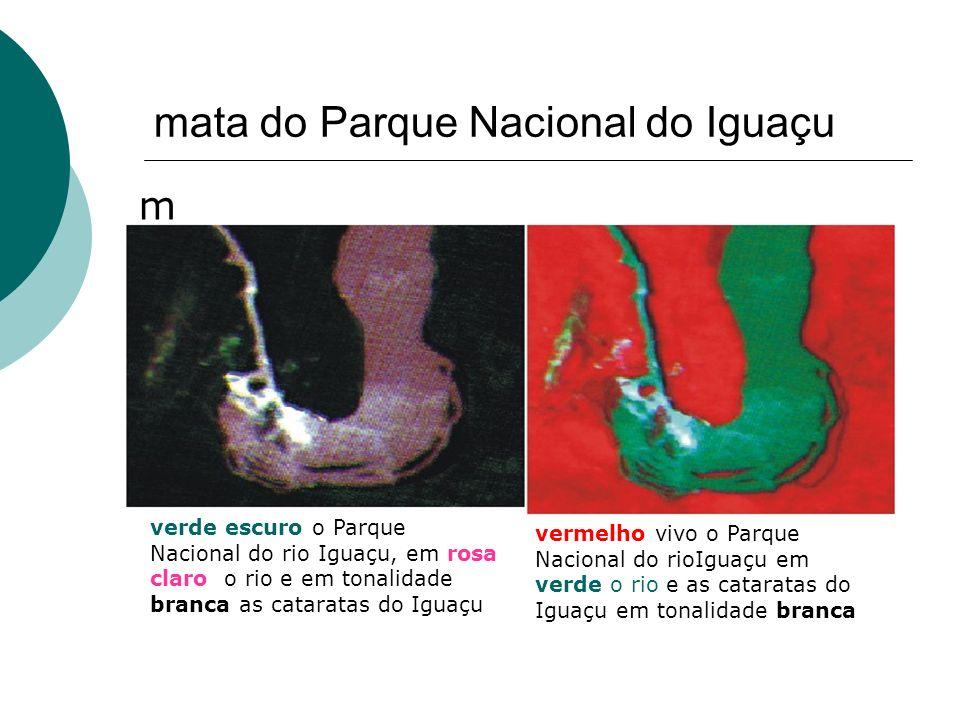 mata do Parque Nacional do Iguaçu m verde escuro o Parque Nacional do rio Iguaçu, em rosa claro o rio e em tonalidade branca as cataratas do Iguaçu ve
