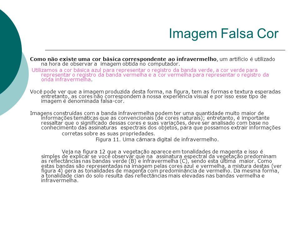 Imagem Falsa Cor Como não existe uma cor básica correspondente ao infravermelho, um artifício é utilizado na hora de observar a imagem obtida no compu
