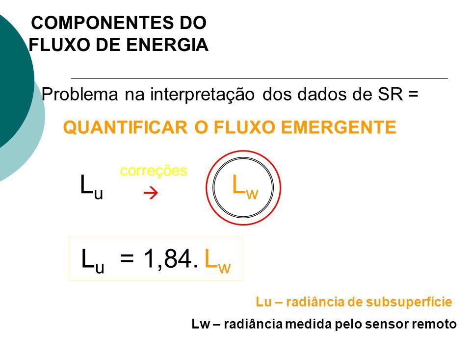 Problema na interpretação dos dados de SR = QUANTIFICAR O FLUXO EMERGENTE L u L w correções L u = 1,84. L w Lw – radiância medida pelo sensor remoto L