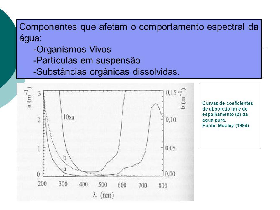 Componentes que afetam o comportamento espectral da água: -Organismos Vivos -Partículas em suspensão -Substâncias orgânicas dissolvidas. Curvas de coe