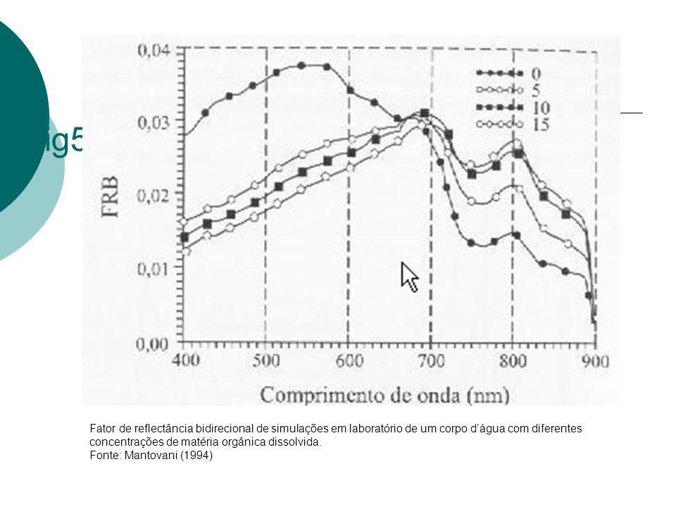 Fator de reflectância bidirecional de simulações em laboratório de um corpo dágua com diferentes concentrações de matéria orgânica dissolvida. Fonte:
