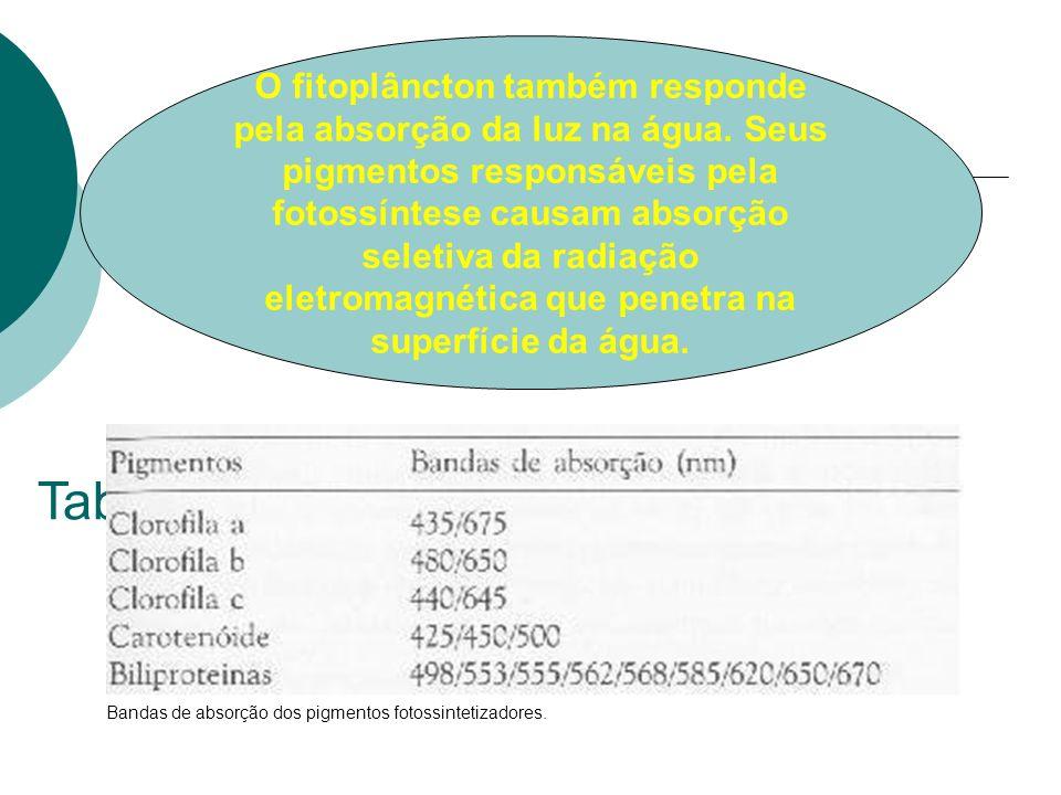 Bandas de absorção dos pigmentos fotossintetizadores. Tab1 O fitoplâncton também responde pela absorção da luz na água. Seus pigmentos responsáveis pe