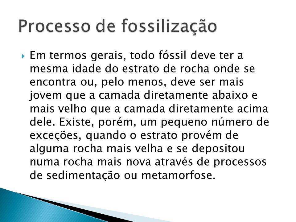 Em termos gerais, todo fóssil deve ter a mesma idade do estrato de rocha onde se encontra ou, pelo menos, deve ser mais jovem que a camada diretamente