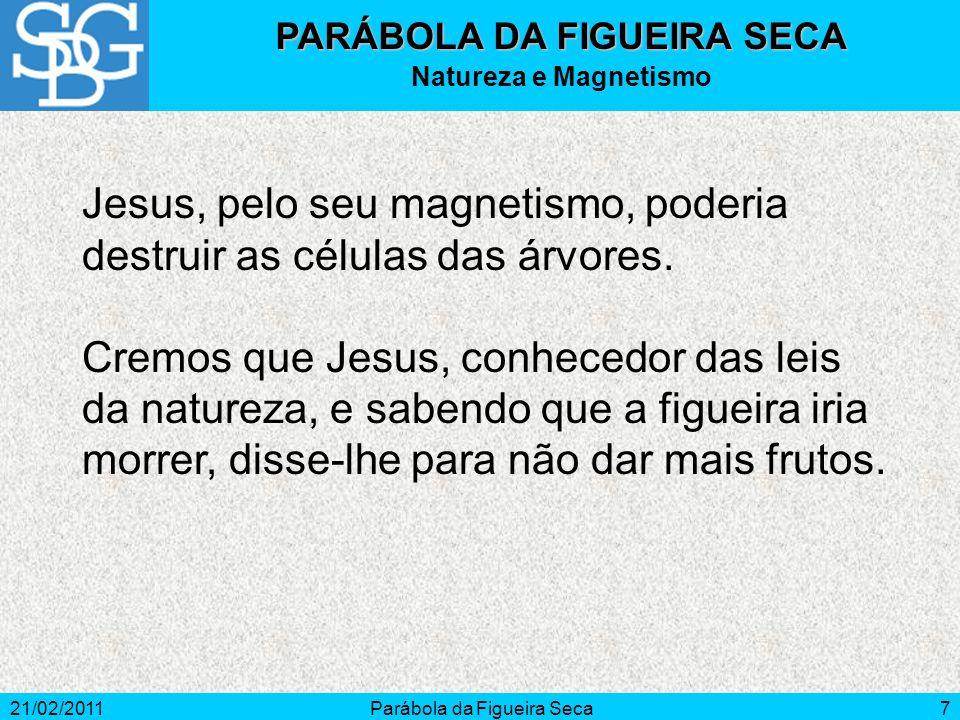 21/02/2011Parábola da Figueira Seca7 Jesus, pelo seu magnetismo, poderia destruir as células das árvores. Cremos que Jesus, conhecedor das leis da nat