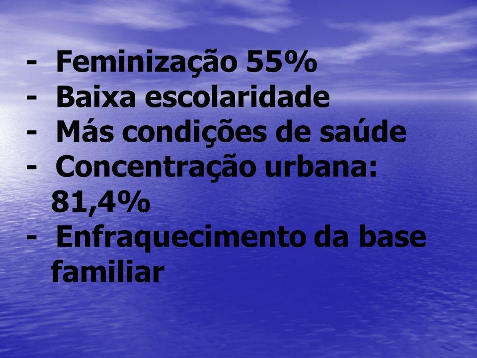 - Feminização 55% - Baixa escolaridade - Más condições de saúde - Concentração urbana: 81,4% - Enfraquecimento da base familiar