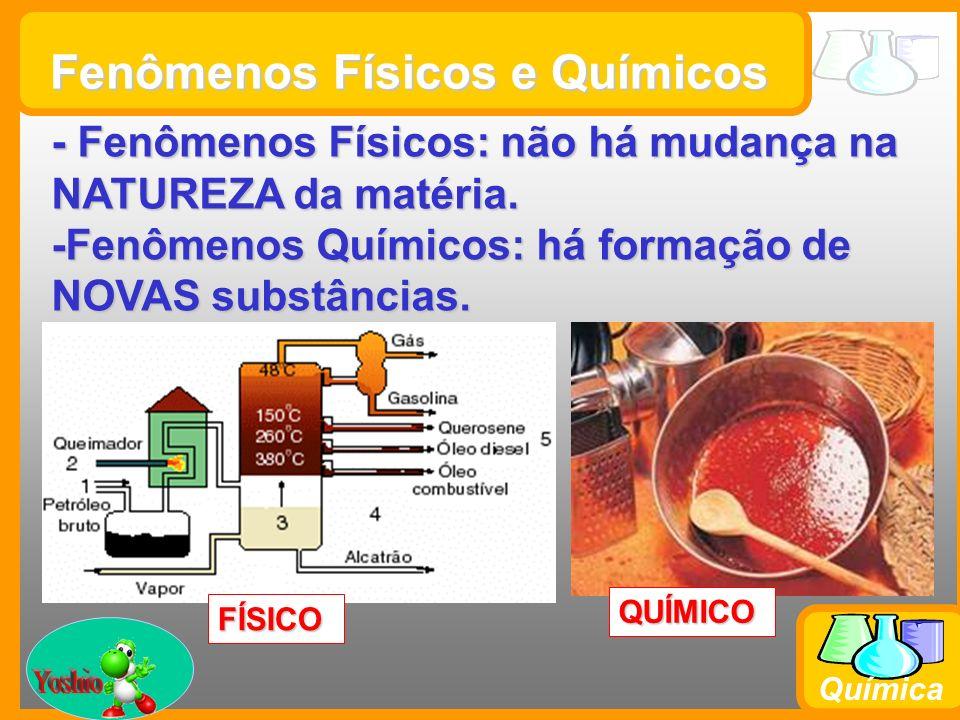 Prof. Busato Química Fenômenos Físicos e Químicos - Fenômenos Físicos: não há mudança na NATUREZA da matéria. -Fenômenos Químicos: há formação de NOVA