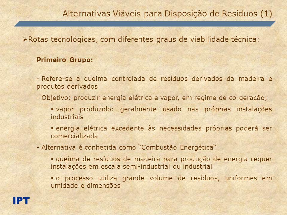IPT Alternativas Viáveis para Disposição de Resíduos (1) Rotas tecnológicas, com diferentes graus de viabilidade técnica: Primeiro Grupo: - Refere-se