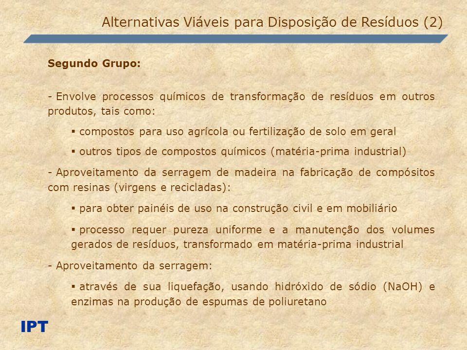 IPT Alternativas Viáveis para Disposição de Resíduos (2) Segundo Grupo: - Envolve processos químicos de transformação de resíduos em outros produtos,