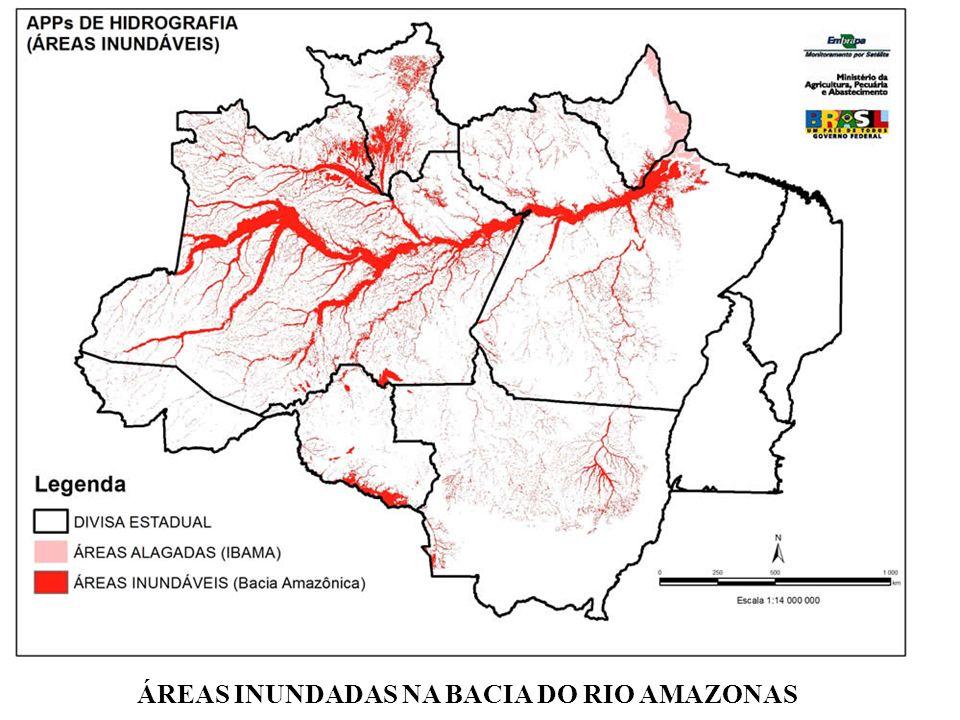 ÁREAS INUNDADAS NA BACIA DO RIO AMAZONAS
