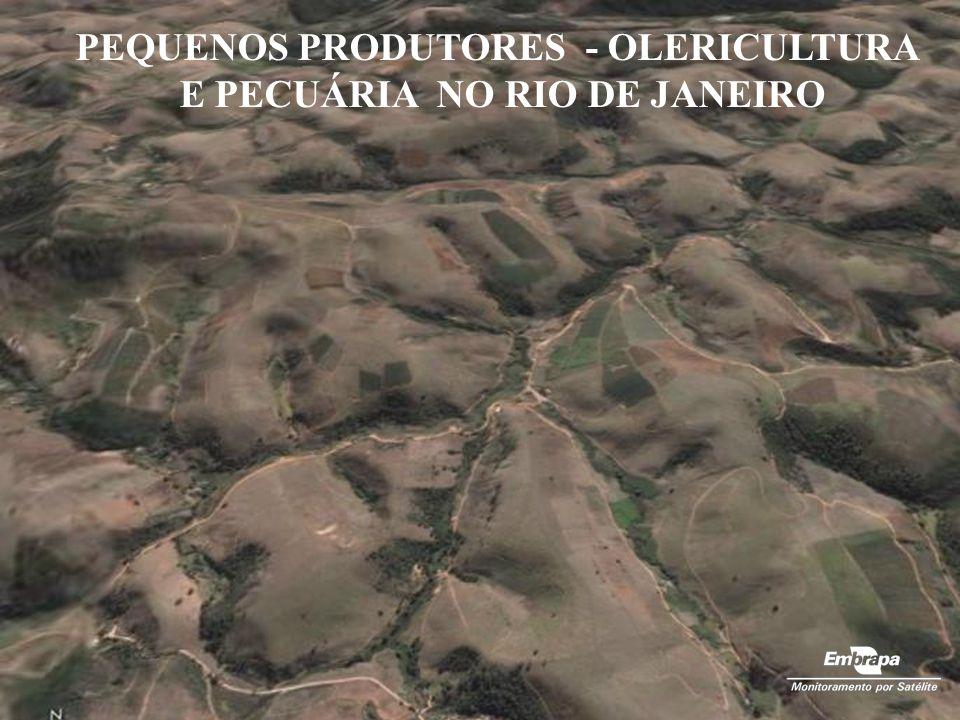 PEQUENOS PRODUTORES - OLERICULTURA E PECUÁRIA NO RIO DE JANEIRO