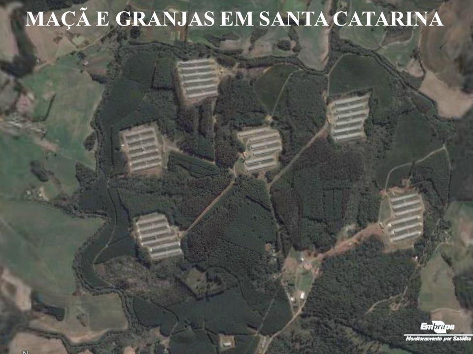 MAÇÃ E GRANJAS EM SANTA CATARINA