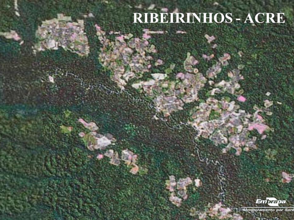 RIBEIRINHOS - ACRE