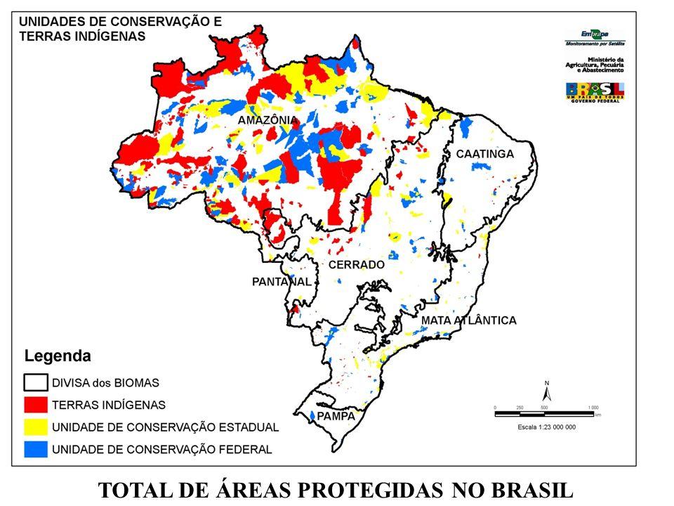 ALCANCE TERRITORIAL DAS APPs ÁREA CALCULADA DE APPs : 1.442.544 km2 17 % DO TERRITÓRIO NACIONAL
