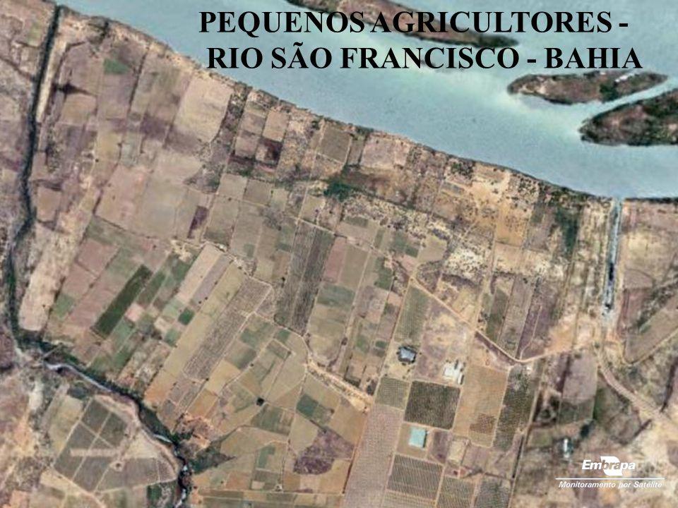 PEQUENOS AGRICULTORES - RIO SÃO FRANCISCO - BAHIA