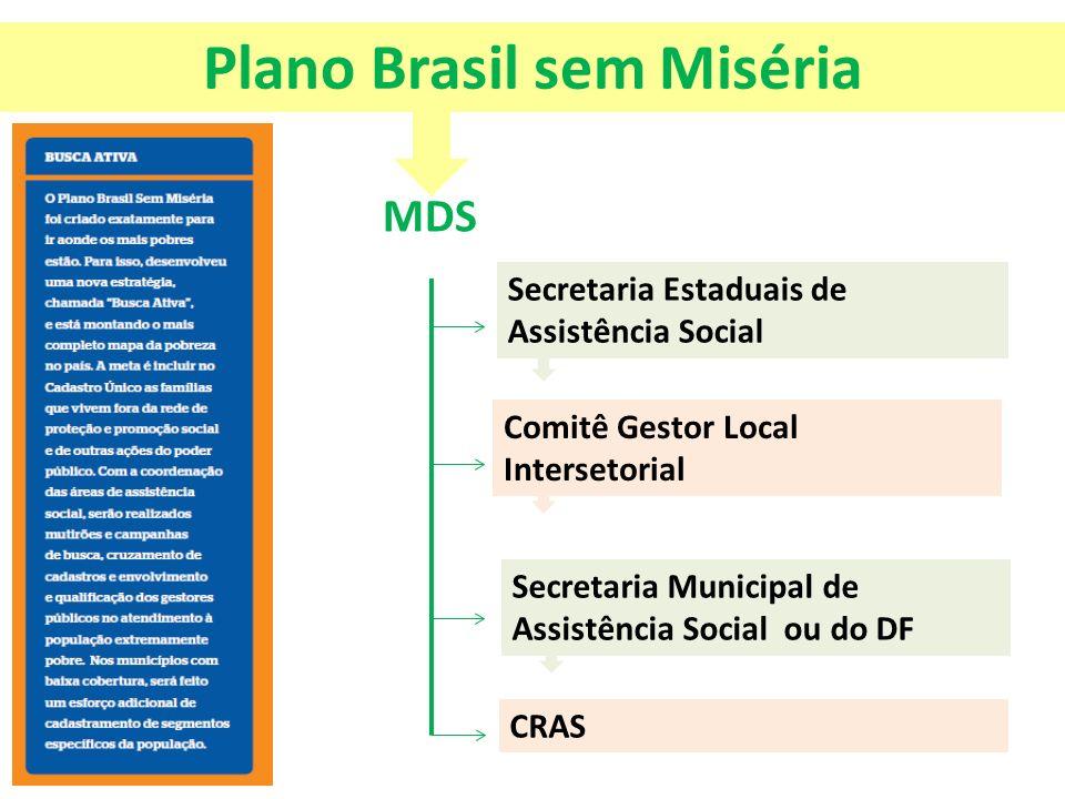 Plano Brasil sem Miséria MDS Secretaria Estaduais de Assistência Social Comitê Gestor Local Intersetorial Secretaria Municipal de Assistência Social o