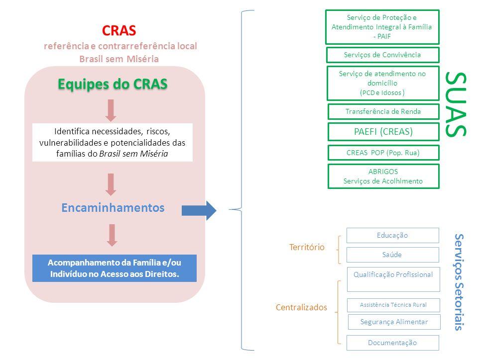 PAEFI (CREAS) Identifica necessidades, riscos, vulnerabilidades e potencialidades das famílias do Brasil sem Miséria Acompanhamento da Família e/ou In