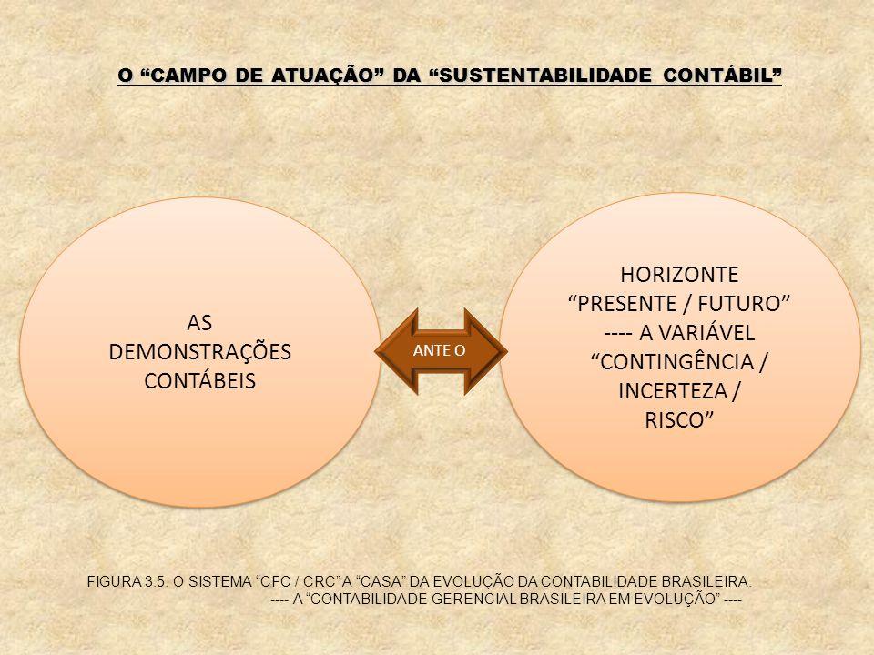 AS DEMONSTRAÇÕES CONTÁBEIS AS DEMONSTRAÇÕES CONTÁBEIS HORIZONTE PRESENTE / FUTURO ---- A VARIÁVEL CONTINGÊNCIA / INCERTEZA / RISCO HORIZONTE PRESENTE