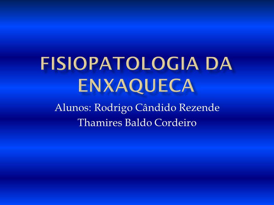Alunos: Rodrigo Cândido Rezende Thamires Baldo Cordeiro