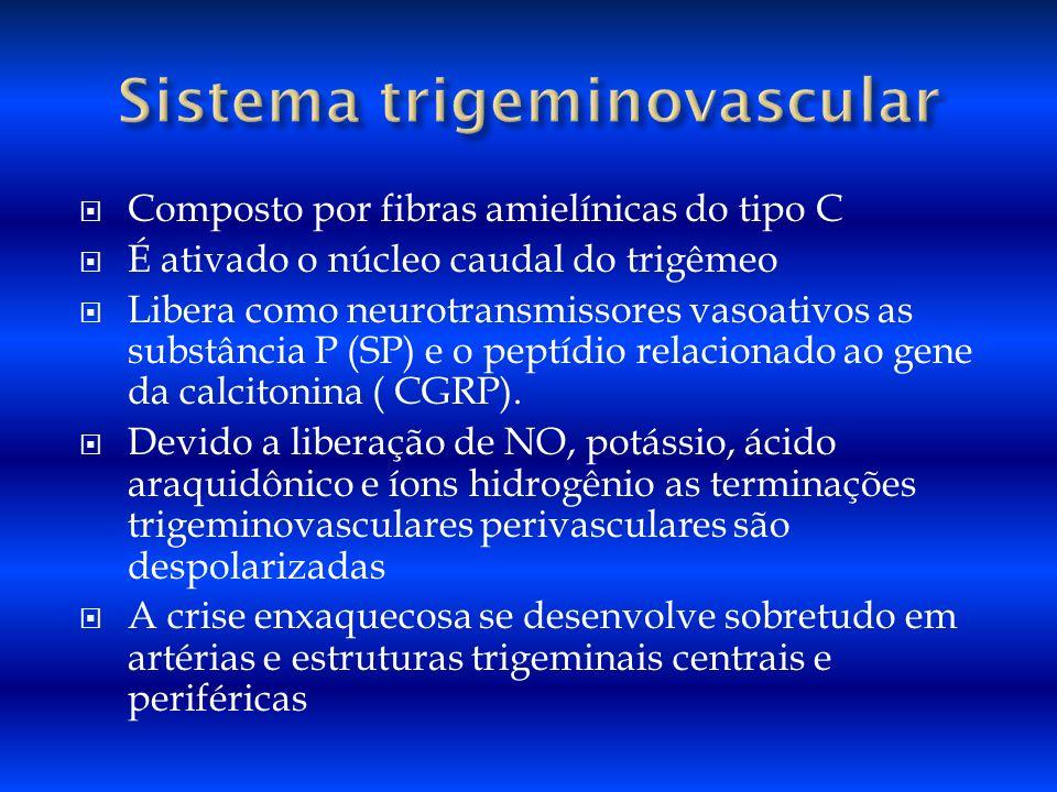 Composto por fibras amielínicas do tipo C É ativado o núcleo caudal do trigêmeo Libera como neurotransmissores vasoativos as substância P (SP) e o pep