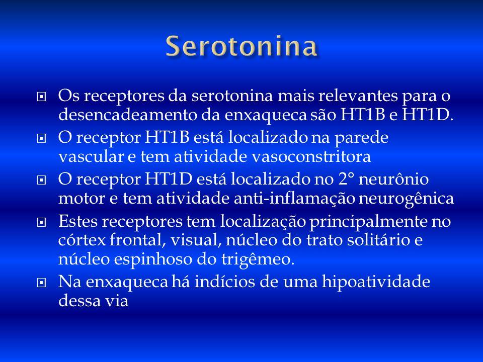 Os receptores da serotonina mais relevantes para o desencadeamento da enxaqueca são HT1B e HT1D. O receptor HT1B está localizado na parede vascular e