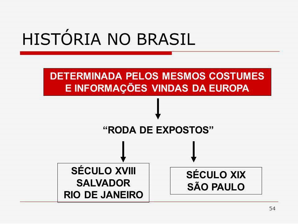 54 HISTÓRIA NO BRASIL DETERMINADA PELOS MESMOS COSTUMES E INFORMAÇÕES VINDAS DA EUROPA SÉCULO XVIII SALVADOR RIO DE JANEIRO RODA DE EXPOSTOS SÉCULO XI
