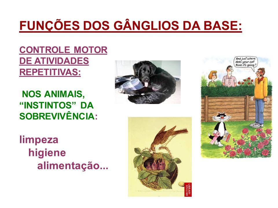 FUNÇÕES DOS GÂNGLIOS DA BASE: CONTROLE MOTOR DE ATIVIDADES REPETITIVAS: NOS ANIMAIS, INSTINTOS DA SOBREVIVÊNCIA: limpeza higiene alimentação...