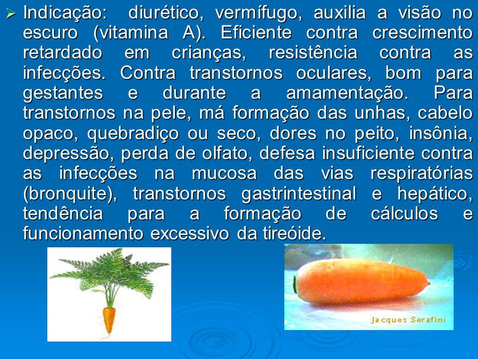 Indicação: diurético, vermífugo, auxilia a visão no escuro (vitamina A). Eficiente contra crescimento retardado em crianças, resistência contra as inf