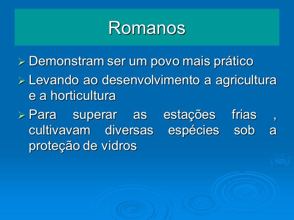 Romanos Demonstram ser um povo mais prático Demonstram ser um povo mais prático Levando ao desenvolvimento a agricultura e a horticultura Levando ao d