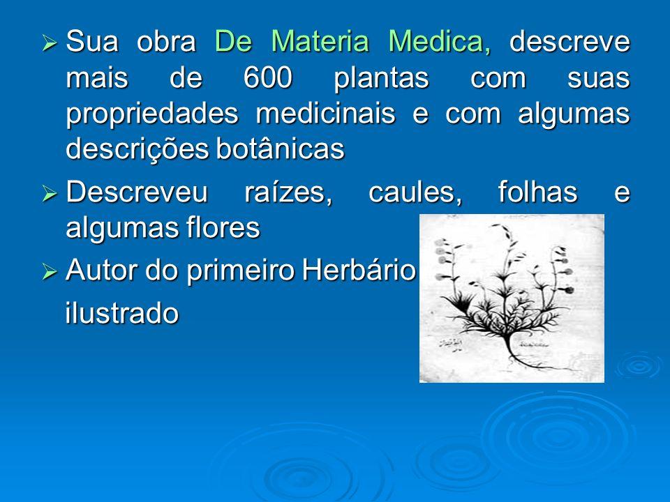 Sua obra De Materia Medica, descreve mais de 600 plantas com suas propriedades medicinais e com algumas descrições botânicas Sua obra De Materia Medic