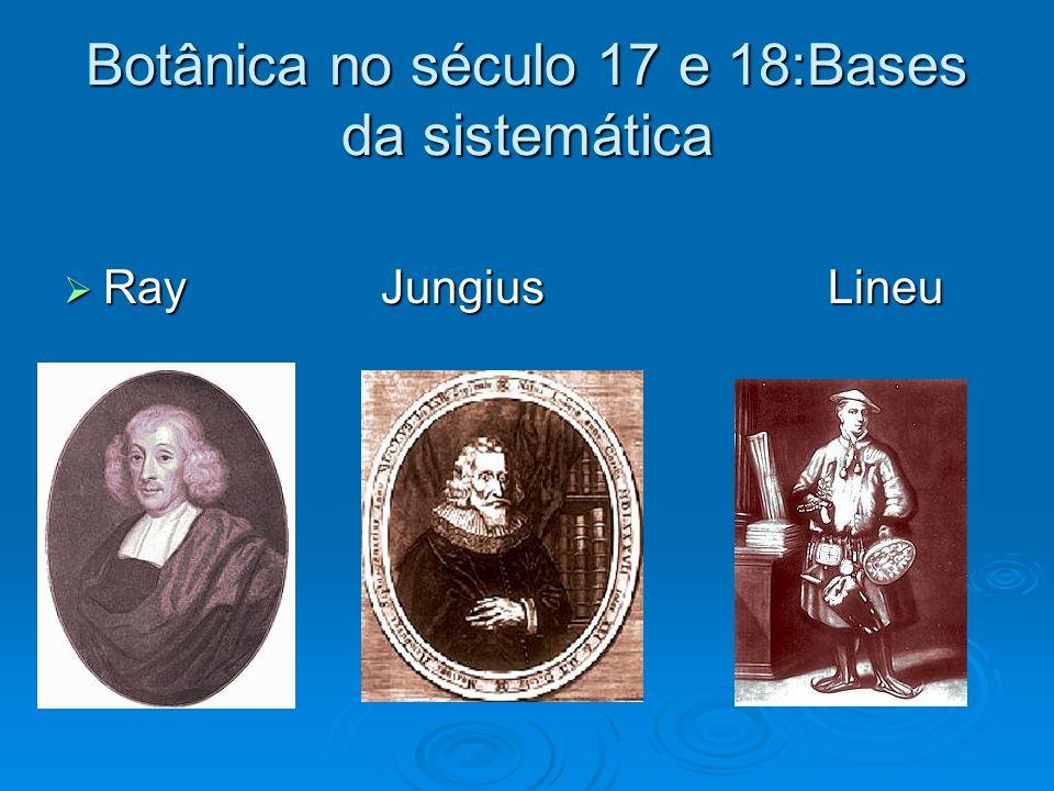 Botânica no século 17 e 18:Bases da sistemática Ray Jungius Lineu Ray Jungius Lineu